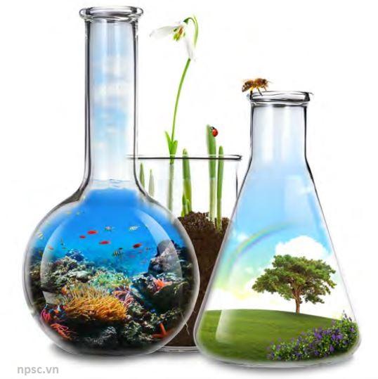Chuẩn AccuStandard - phân tích tồn dư hữu cơ trong môi trường
