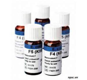 Kháng huyết thanh vi sinh vật SSI Diagnostica - vi khuẩn Ecoli F4 và F5