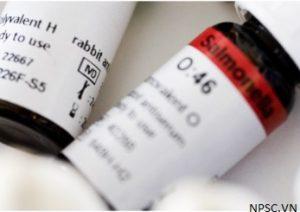 Kháng huyết thanh vi sinh vật SSI Diagnostica - vi khuẩn Salmonella polyvalent H