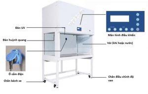 Hướng dẫn sử dụng tủ cấy vi sinh model BBS-DDC/ SDC