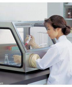 Tủ thao tác cách ly vô trùng AS ONE Glove Box model AS-600S