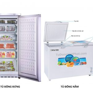 Nên mua tủ đông đứng hay nằm